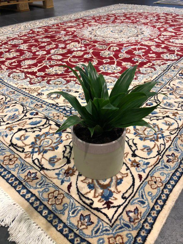 Het handgeknoopt tapijt, een duurzame keuze