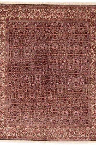 perzisch tapijt bidjar 8687 handgeknoopt wol 1